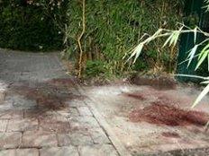 Blutspuren auf der Straße zeugen von dem Mord.